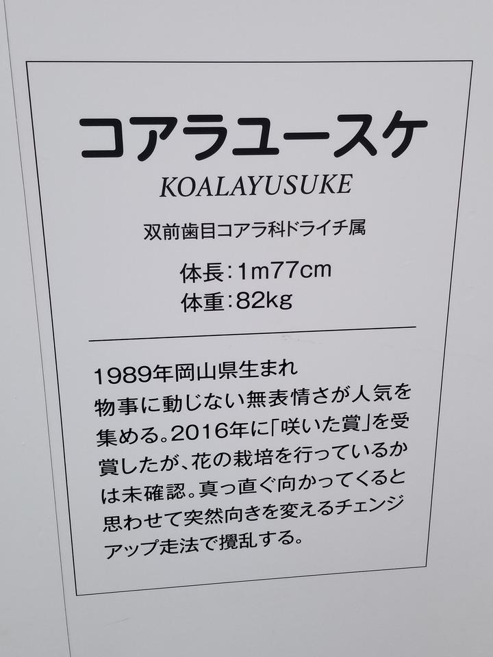 広島観光402