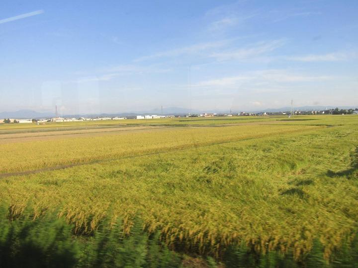 広島観光296