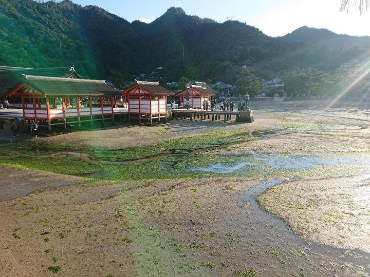 宮島観光55