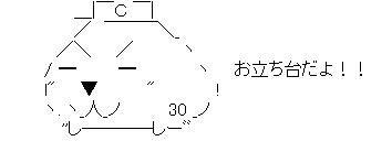 一岡カピ3号AA