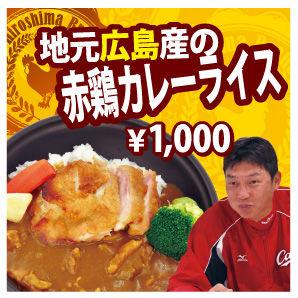 新井赤鶏カレーライス