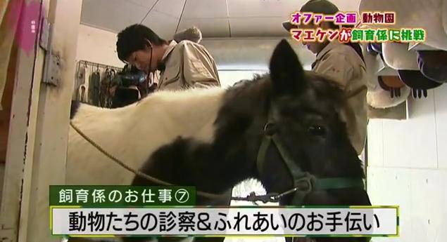 恋すぽ新春SP菊池久本マエケン064