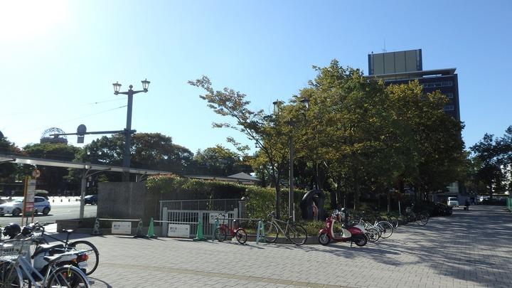 地元広島2016日本シリーズ51