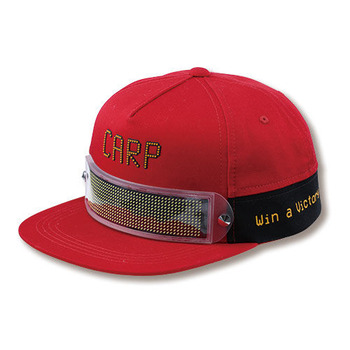 LED DISPLAY CAP1