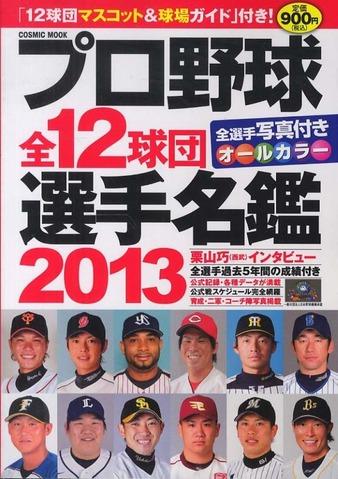 選手名鑑2013
