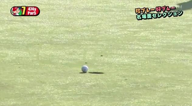 カープ選手会ゴルフ2014113