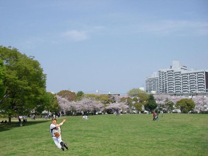 新井コラ公園