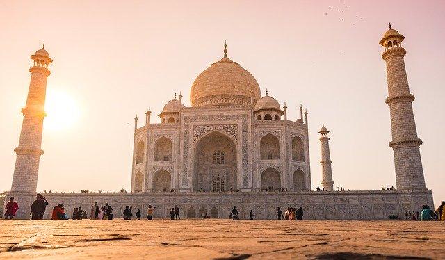【悲報】 インドに到達したバッタ、巨大化