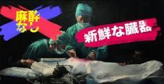 イカゲーム 臓器摘出場面で中国の人権問題が浮上…国連も注目 中国人権問題