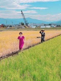 稲田朋美氏が謎画像を投稿 ピンクのワンピースで田んぼのあぜ道を激走