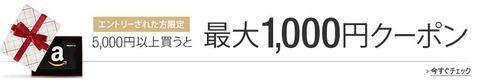 Amazonギフト券を5000円以上買うと300円クーポンがもらえます