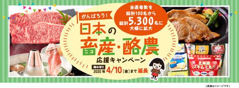 日本の蓄膿