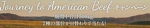 アメリカンビーフ
