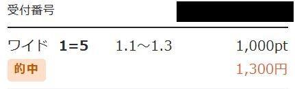 ワイド1.3
