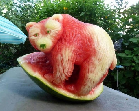 watermelon_plant_art_002