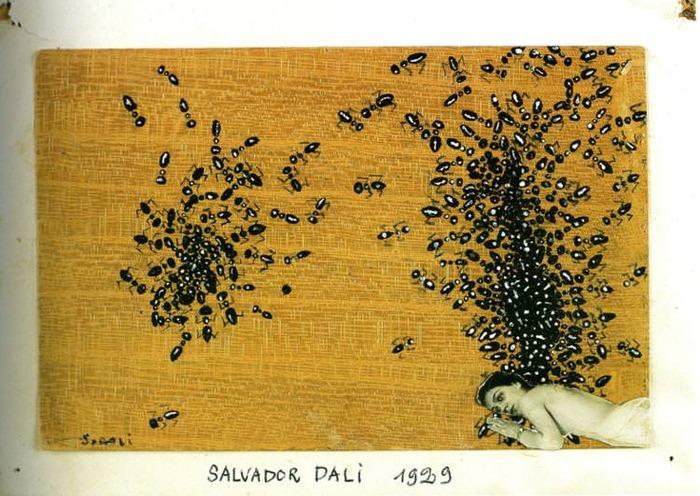 1929 The Ants