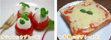 yasai-blog7