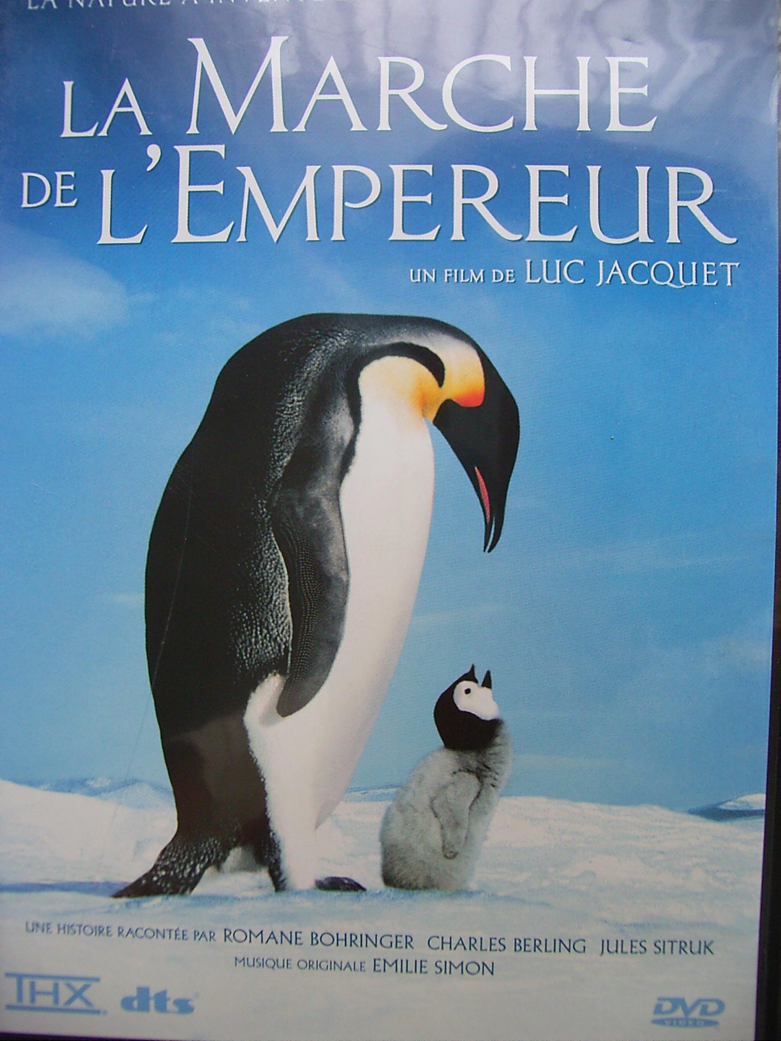 ペンギンの画像 p1_39