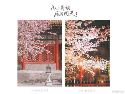 【日本語チューター】国際化に進む日本と私の夢