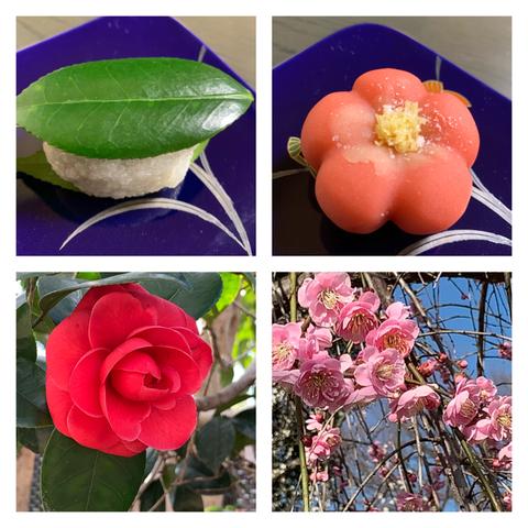 【日本語チューター】北野天満宮の梅と老松のお菓子