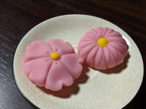 【日本語チューター】和菓子(わがし)職人(しょくにん)をめざして