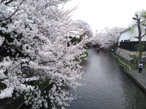 kokoka日本語クラス春休(はるやす)みのお知らせ