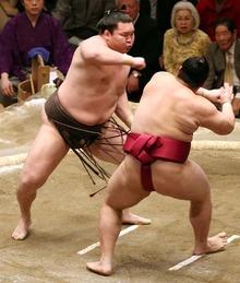白鵬VS遠藤 かちあげ