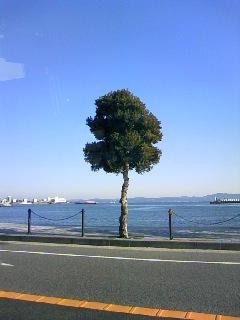 04204c1b.jpg