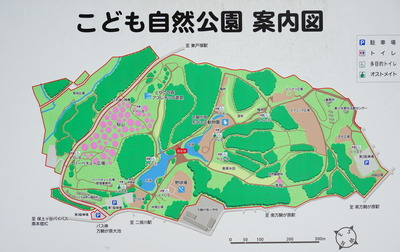 kodomoshizen-park10