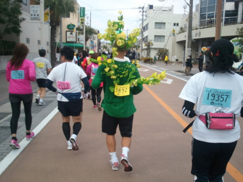 菜の花マラソン2012-4