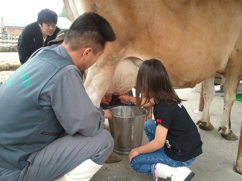 高千穂牧場 乳搾り体験2
