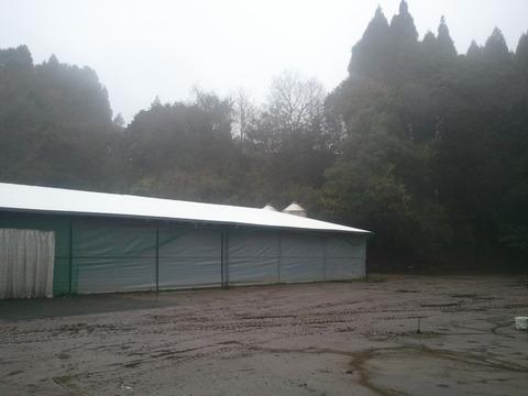 雨の日の肉豚舎 3月2