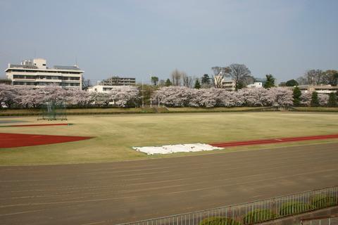 tachikawa2302