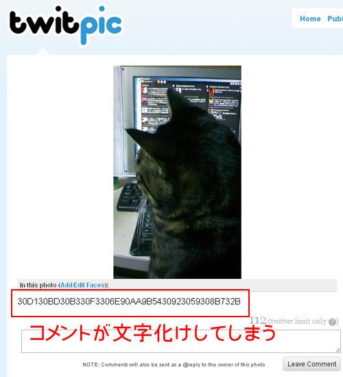 TwitPic文字化け対処方法4