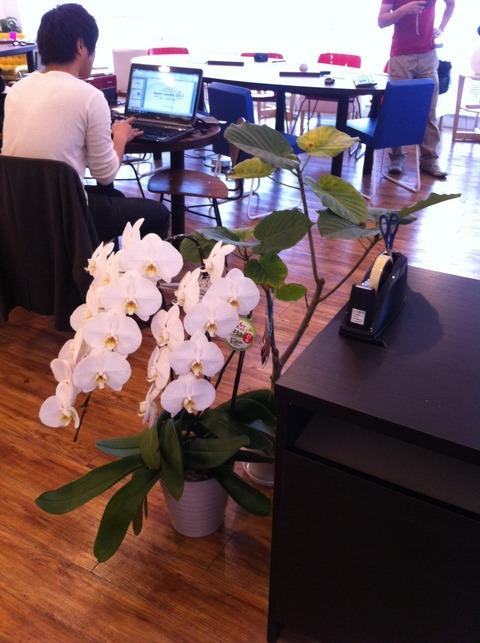 学芸大学コワーキングスペース シェアオフィス TREE7 ツリーセブン011