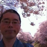 善福寺川の桜が満開