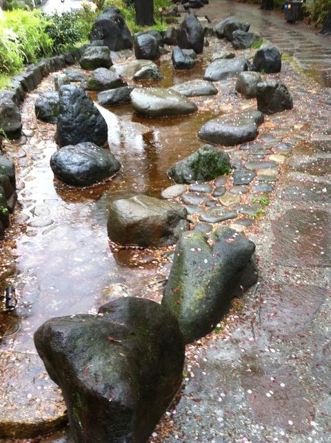 神田上水公園83