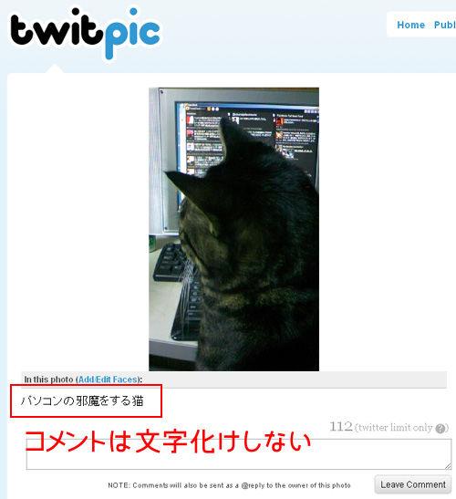 TwitPic文字化け対処方法
