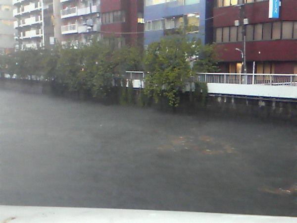 東京大雨6