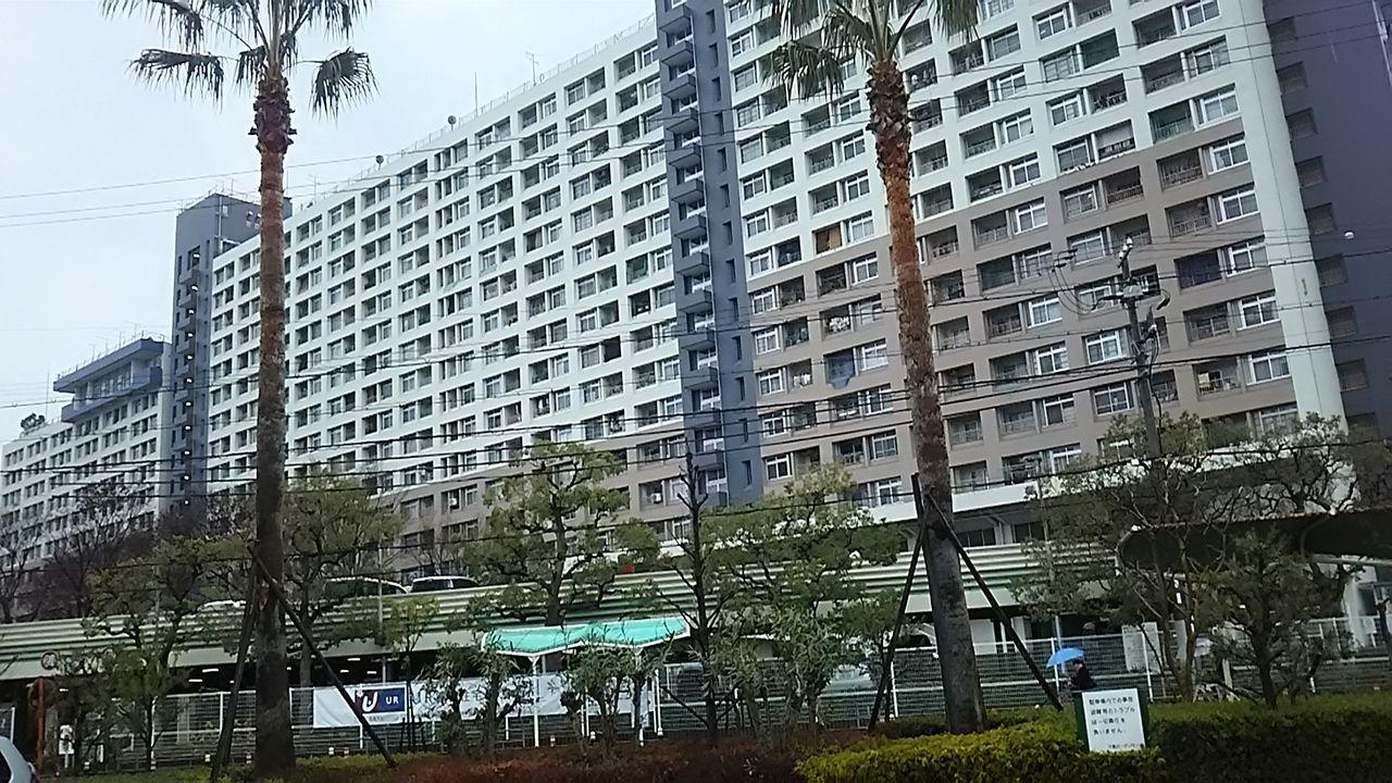 モール 千島 ガーデン