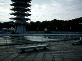 駒沢公園02