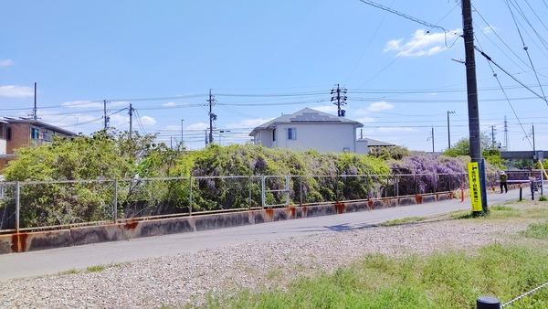 DSC_4010-01
