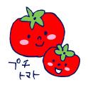 双子を授かっちゃいましたヨ☆-0804トマト01