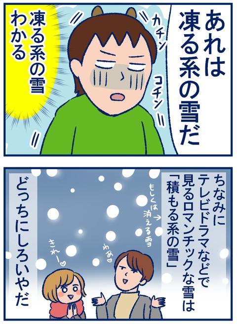 雪の種類02