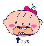 双子を授かっちゃいましたヨ☆-1212したの歯02