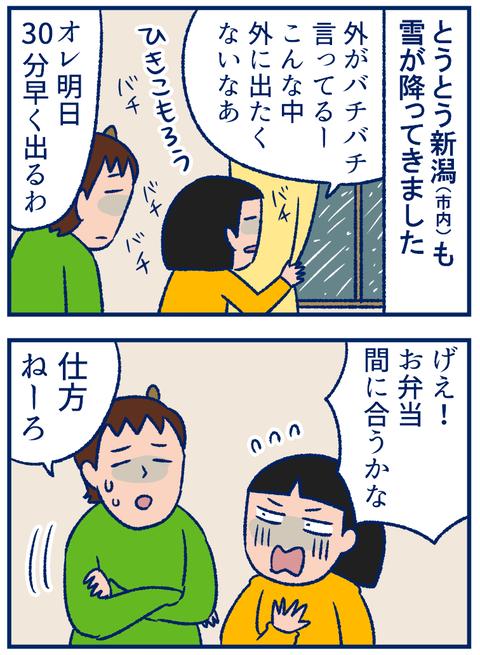 雪の種類01