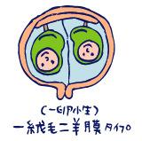 双子を授かっちゃいましたヨ☆-1227入院01