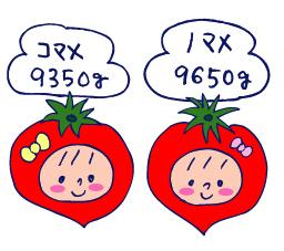 双子を授かっちゃいましたヨ☆-0419プチトマト01