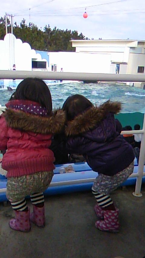 双子を授かっちゃいましたヨ☆-0113水族館03