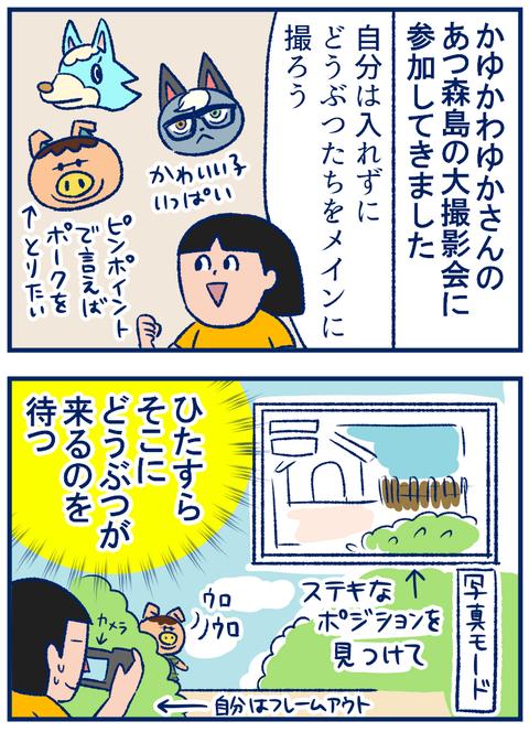 ゆかさんの島01